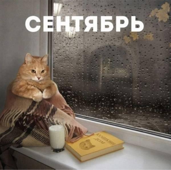 http://s6.uploads.ru/t/ix954.jpg