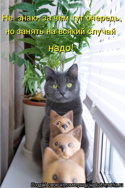 http://s6.uploads.ru/t/jz0Jb.jpg