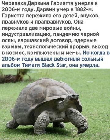 http://s6.uploads.ru/t/k3ClZ.jpg