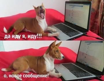 http://s6.uploads.ru/t/kTagJ.jpg