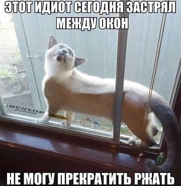 http://s6.uploads.ru/t/kmdlM.jpg