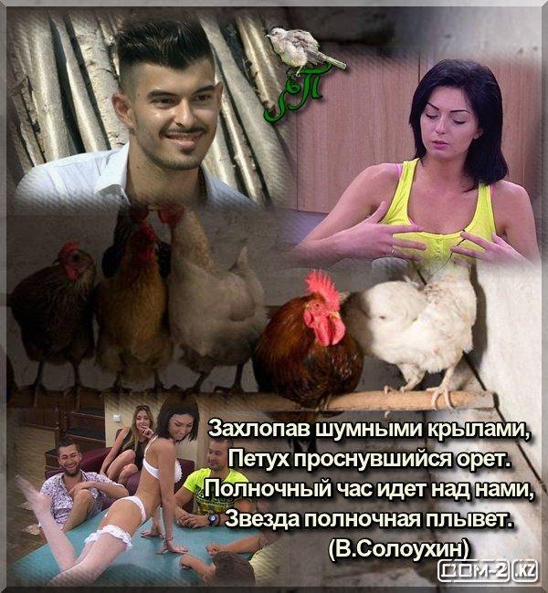 http://s6.uploads.ru/t/lfaGi.jpg