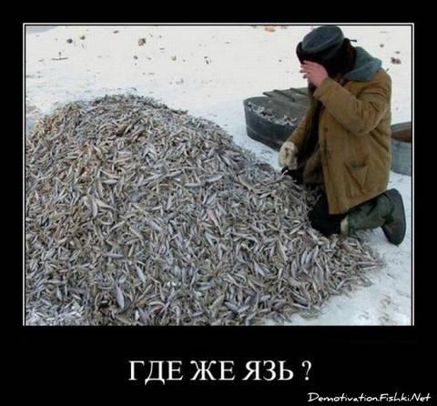 http://s6.uploads.ru/t/mIMTS.jpg