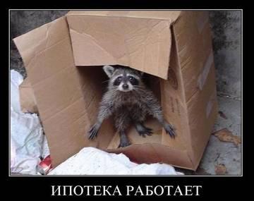 http://s6.uploads.ru/t/mdl0s.jpg