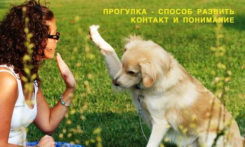 http://s6.uploads.ru/t/moeL3.jpg