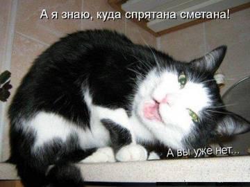 http://s6.uploads.ru/t/nZJ6f.jpg