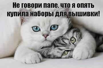 http://s6.uploads.ru/t/nxWUy.jpg