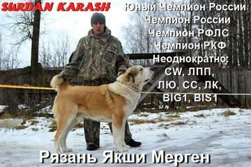 http://s6.uploads.ru/t/oCWI7.jpg