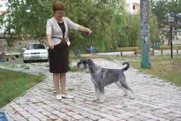 http://s6.uploads.ru/t/oSZ3R.jpg