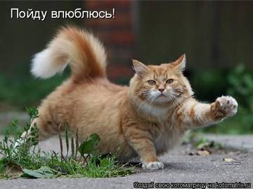 http://s6.uploads.ru/t/oTVmX.jpg