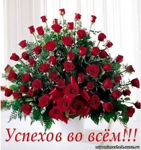 http://s6.uploads.ru/t/ozJSw.jpg