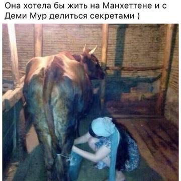 http://s6.uploads.ru/t/pF30Q.jpg