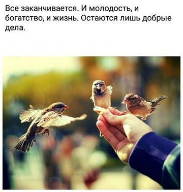 http://s6.uploads.ru/t/pu7aO.jpg