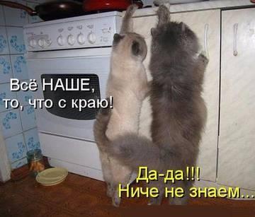 http://s6.uploads.ru/t/q8zeH.jpg