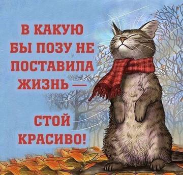 http://s6.uploads.ru/t/qD15x.jpg