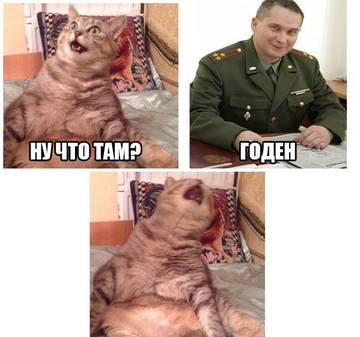 http://s6.uploads.ru/t/qaGZc.jpg