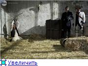 http://s6.uploads.ru/t/qfayG.jpg