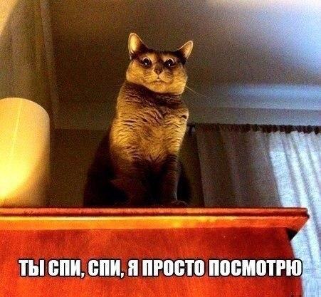 http://s6.uploads.ru/t/r4O2E.jpg