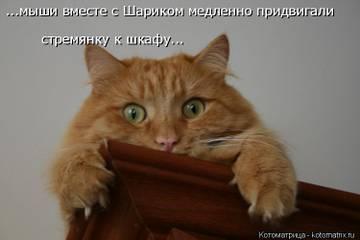 http://s6.uploads.ru/t/rUP63.jpg