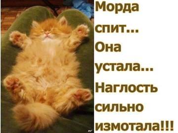 http://s6.uploads.ru/t/s5mZY.jpg