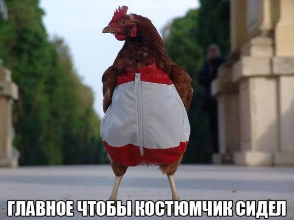 http://s6.uploads.ru/t/s62le.jpg