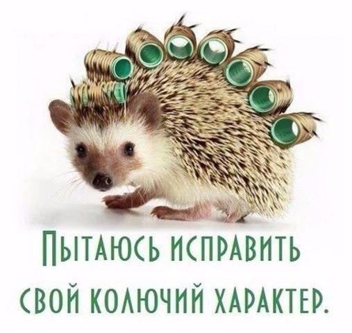 http://s6.uploads.ru/t/sYVXH.jpg
