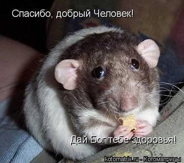 http://s6.uploads.ru/t/sj4TV.jpg