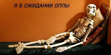 http://s6.uploads.ru/t/snhX7.jpg