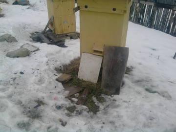 http://s6.uploads.ru/t/srPpC.jpg