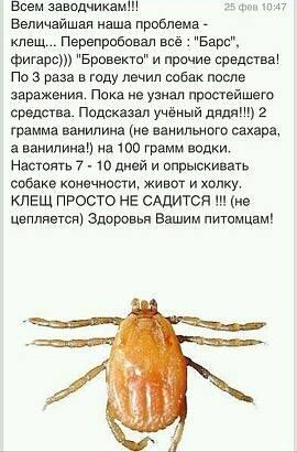 http://s6.uploads.ru/t/thcLn.jpg