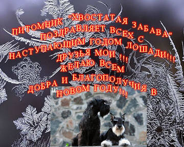 http://s6.uploads.ru/t/uJiC9.jpg