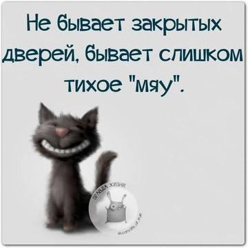 http://s6.uploads.ru/t/udQVm.jpg
