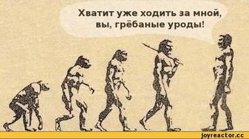 http://s6.uploads.ru/t/wxz2T.jpg