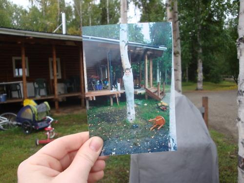 http://s6.uploads.ru/t/xdUbT.jpg