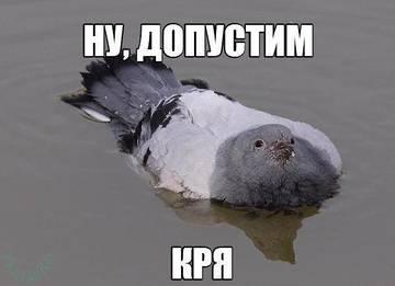 http://s6.uploads.ru/t/xtDYb.jpg