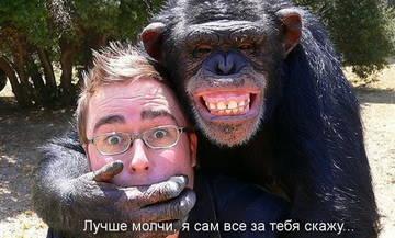 http://s6.uploads.ru/t/y8xMS.jpg