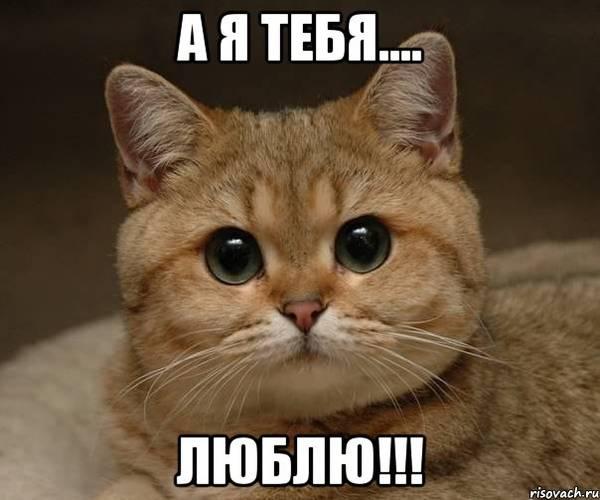 http://s6.uploads.ru/t/ydR7U.jpg