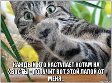 http://s6.uploads.ru/t/yo1eF.jpg