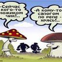 http://s6.uploads.ru/t/zi1nv.jpg