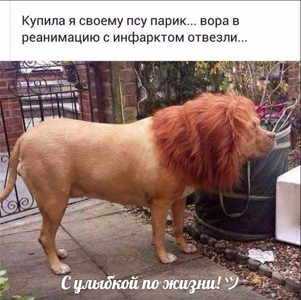 http://s6.uploads.ru/t7PiD.jpg