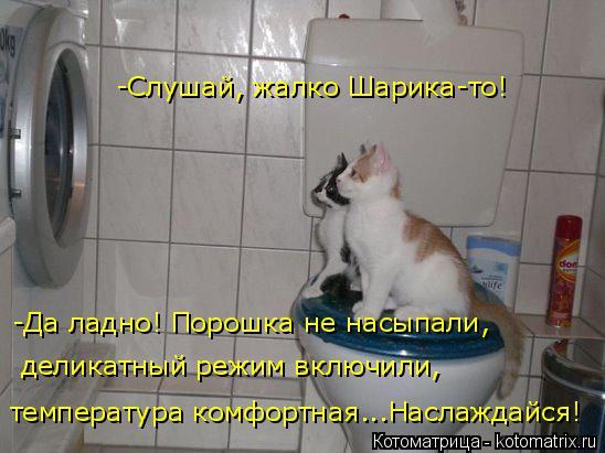 http://s6.uploads.ru/tgKBm.jpg
