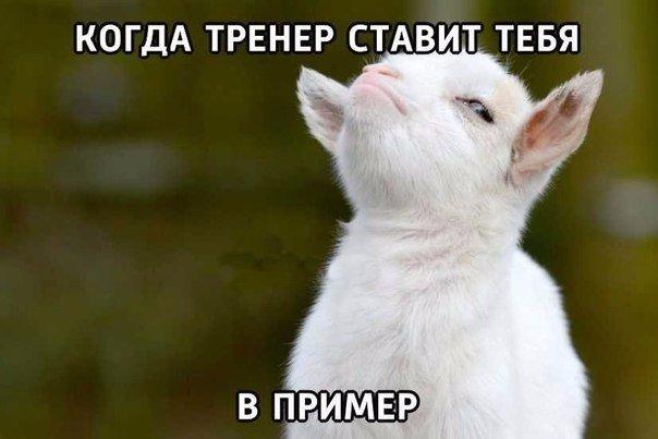 http://s6.uploads.ru/tmXcU.jpg