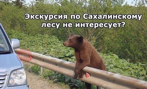 http://s6.uploads.ru/v735z.jpg