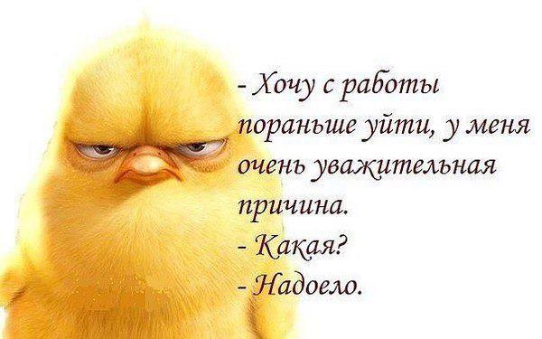 http://s6.uploads.ru/xCHL8.jpg