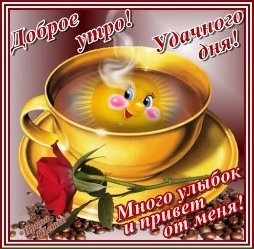 http://s6.uploads.ru/yRHV6.jpg