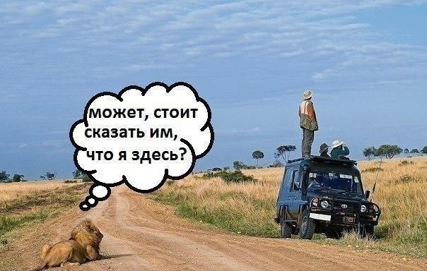 http://s6.uploads.ru/ydRQU.jpg