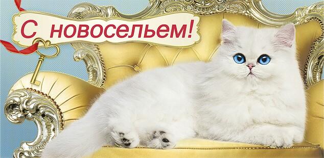 http://s6.uploads.ru/4vpcA.jpg