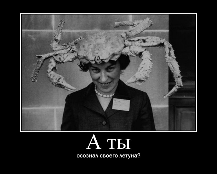 http://s6.uploads.ru/7GRym.jpg