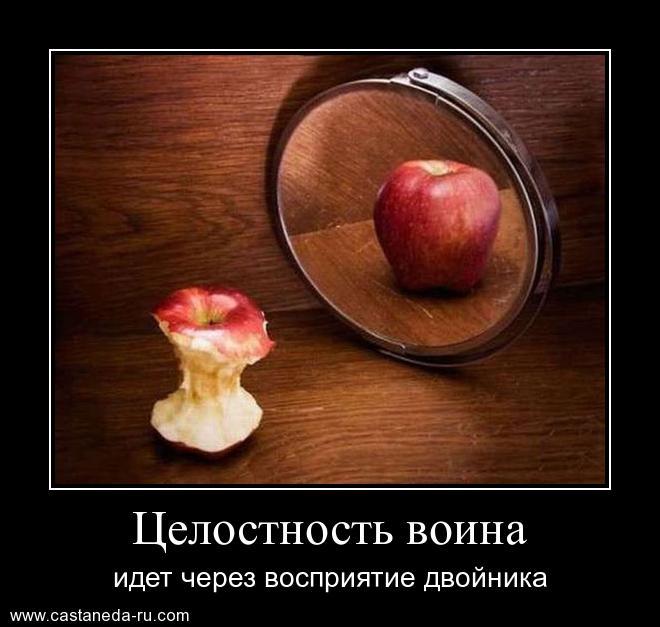 http://s6.uploads.ru/7fbtj.jpg