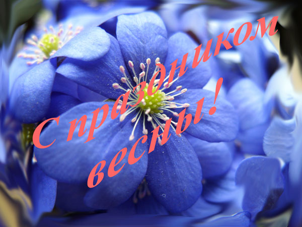 http://s6.uploads.ru/ERPqp.jpg